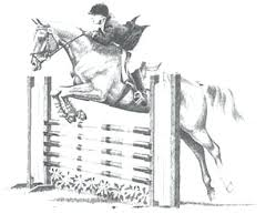 Horse Jumping Coloring Pages Show Jumper And Rider