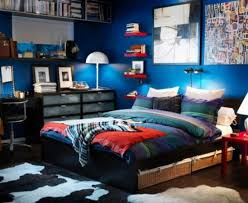 Excellent Small Teen Boy Bedroom Design With Cool Blue Wall Paint Color And Twin Size Bed