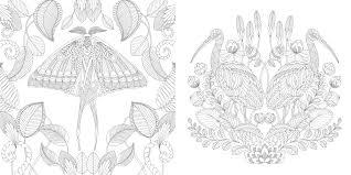 Millie Marottas Tropical Wonderland A Colouring Book Adventure Books Marotta 0787721945802 Amazon