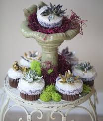 Garden Succulent Gumpaste Cupcakes