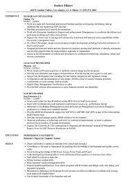 Download SAP Developer Resume Sample As Image File