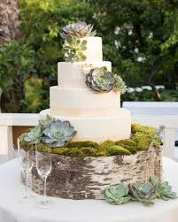 Succulent Wedding Cake And Birch Moss Stand