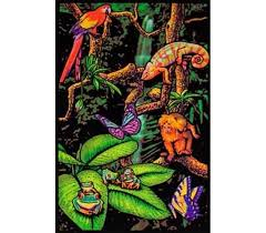 Rainforest Blacklight Poster Items For College Best Dorm Stuff
