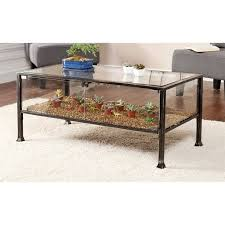 Southern Enterprises Terrarium Glass Display Coffee Table In Black Inside Designs 9