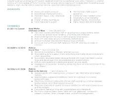 Server Resumes Examples Example Of Resume Samples