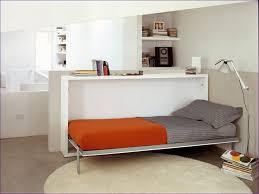 Ikea Murphy Bed Kit by Bedroom Wonderful Horizontal Murphy Beds Wall Beds Folding Bed
