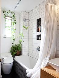 Plants In Bathroom Images by Plants In Shower Bathroom Ideas Houzz