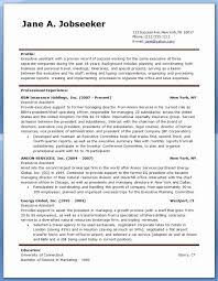 Sample Resume For Personal Assistant To Ceo Lovely Executive