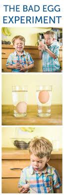 best 25 do bad eggs float ideas on pinterest if eggs float bad