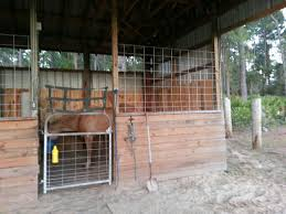 Horse Stall Design Ideas Priefert Can Customize Your Stalls Barns Barrel Racing Volunteer Building Systems Robert Henard Horse Barn Pine Creek Cstruction Llc Contractors Mulligans Run Farm Free Images Page 3 Stalls Materials From Ab Martin Budget Interior Barn Ideanot The Gate For A Stall Door Though Horse Amish Sheds Bob Foote Homemade Box Made With 2 X 8s And 4 4s Horsey Homes Santa Ynez Dc Builders Stall Grills Doors How To Build