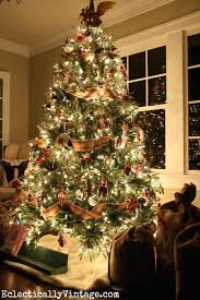 Fraser Christmas Trees Uk by Images Of Balsam Hill Christmas Trees Uk Halloween Ideas