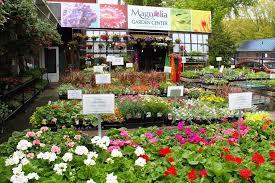 Magnolia Garden Center Home