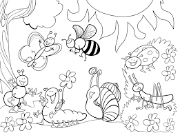 Bug Coloring Pages For Preschool 1