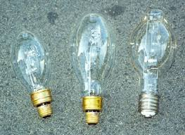 Self Ballasted Lamp Adapter by Leptraps Com Insect Light Traps Uv And Mv Bulbs