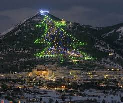 The Biggest Christmas Tree In World