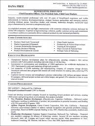 Job Hopping Resume Example Functional Samples More