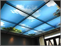 decorative acoustic drop ceiling tiles tiles home design ideas