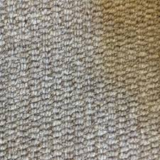 All Floors Carpet by 26 Best Carpet Images On Pinterest Carpets Basement Ideas And