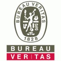 bureau veritas brands of the world vector