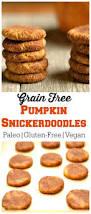 Splenda Pumpkin Pie Crustless by 25 Best Sugar Free Pumpkin Pie Ideas On Pinterest Low Carb