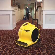 Scraping Popcorn Ceiling With Shop Vac by Shop Vac Air Mover Blower Fan 1030100 Do It Best
