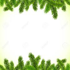 Green Christmas Tree Branches Vector Frame Stock