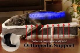 K9 Ballistics Bed by The Best Orthopedic Dog Beds In 2017 Dogs Recommend