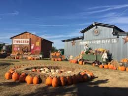 Wenninghoff Pumpkin Patch Omaha by The Best Pumpkin Patches For Picking Your Own Jack O U0027 Lantern