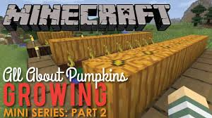 Minecraft Pumpkin Seeds Wont Plant by All About Growing Pumpkins In Minecraft Part 2 Youtube