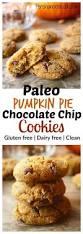 Splenda Pumpkin Pie Crustless by 3074 Best Apple And Pumpkin Spice Recipes Images On Pinterest