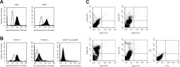 the peripheral cannabinoid receptor cb2 frequently expressed on