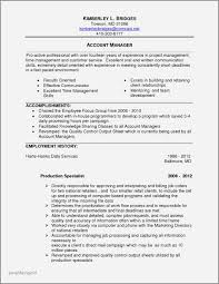 Short Professional Summary For Resume Examples Luxury Qualifications Samples Jpg 1020x1320