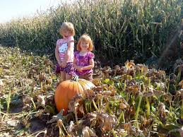 Southern Ohio Pumpkin Patches by Mazeplay Local Corn Maze Finder Corn Mazes