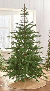 Martha Stewart Pre Lit Christmas Tree Manual by Faux Grand Fir Tree Grand Fir Fir Tree And Firs