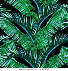 Palm Leaf Wallpaper Tropical Leaves Tree Seamless Vector Jungle Floral Pattern Background