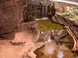l aquarium de la porte dorée aquarium récifal aquarium marin