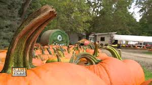 Pumpkin Patch Green Bay Wi by Small Towns Blaser U0027s Acres Offers Fall Fun Nbc26 Wgba Tv Green