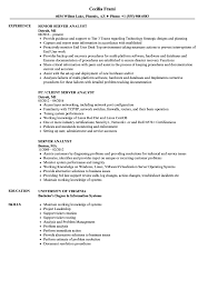 Download Server Analyst Resume Sample As Image File