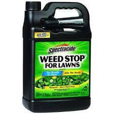 Weed Stop 1 Gal Ready To Use Sprayer