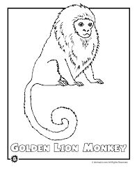 Animal Coloring Pages Of The 9 Most Endangered Rainforest Animals Including Golden Lion Monkey Poison Dart Frog And Manatee