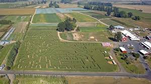 Pumpkin Patch Sauvie Island Corn Maze by Aerial View Of Portland U0027s Original Corn Maze On Sauvie Island