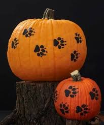 Cute Pumpkins Stencils by Halloween Pumpkin Ideas For Those Who Love The Outdoors