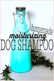 Do Morkies Shed A Lot by Homemade Dog Shampoo First Home Love Life
