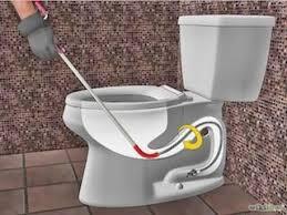toilettes bouches que faire toilettes bouchées que faire