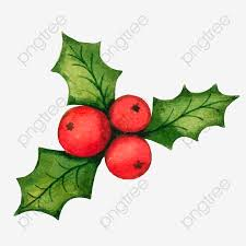 Christmas Holly Decorations Vector Material Vector Holly