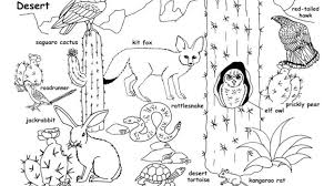 Coloring Pages Desert Animals