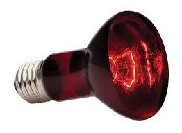 amazon com exo terra heat glo infrared spot l 50 watt 120