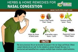 12 Natural Home Reme s For Chest Congestion Relief