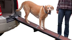 Top 5 Best Cheap Dog Ramp Dog Car Ramps Best Prices Best Dog Ramp ... Inexpensive Doggie Ramp With Pictures Best Dog Steps And Ramps Reviews Top Care Dogs Photos For Pickup Trucks Stairs Petgear Tri Fold Reflective Suv Petsafe Deluxe Telescoping Pet Youtube The Writers Fun On The Gosolvit And Side Door Dogramps Steps Junk Mail For Cars Beds Fniture Petco Lucky Alinum Folding Discount Gear Trifolding Portable 70 Walmartcom 5 More Black Widow Trifold Extrawide