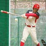 日本, 日本プロ野球